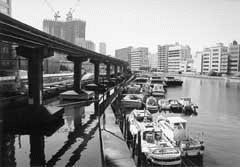 渚橋から夕凪橋への途中