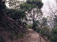 【若草山の下山道】